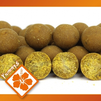 Imperial Fishing IB Carptrack Osmotic Oriental Spice Boilie - 1 kg / 16 mm