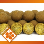 Imperial Fishing IB Carptrack Osmotic Oriental Spice Boilie - 2 kg / 16 mm